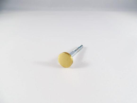 Geborsteld goud sierschroef voor leren plankdragers